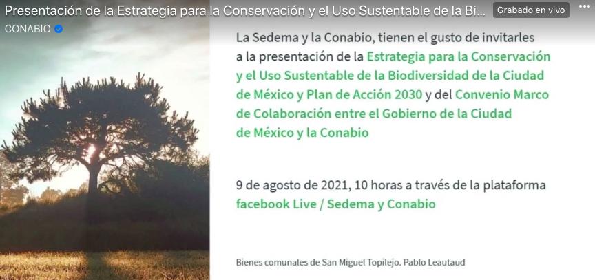 Estrategia para la Conservación y el Uso Sustentable de la Biodiversidad de la Ciudad de México (ECUSBE-CDMX) y Plan de Acción 2030